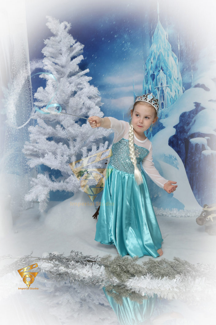 Cinderella or Frozen Themed Photoshoot